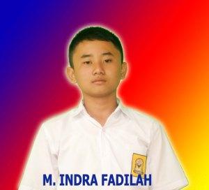 M INDRA FADILAH