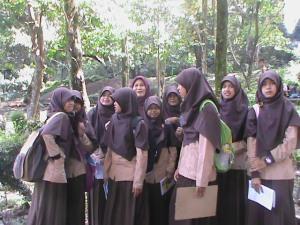 kebun binatang34522